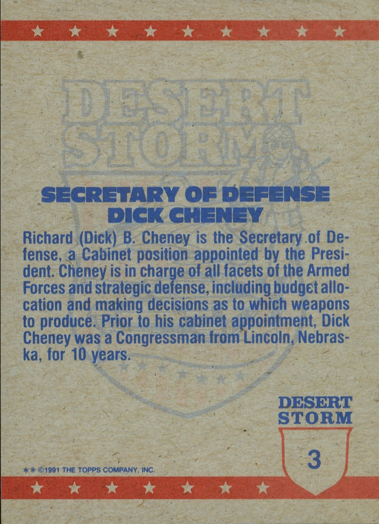 desert-storm-dick-cheney-back-details